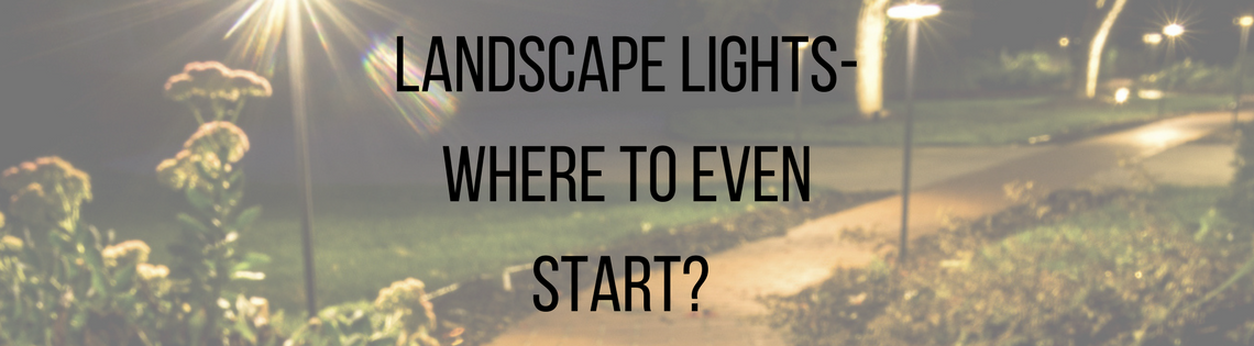 Landscape Lights- Where to Even Start?